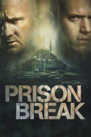 Prison Break: Em Busca da Verdade