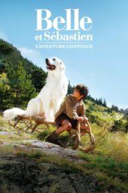 Belle e Sebástian: A Aventura Continua